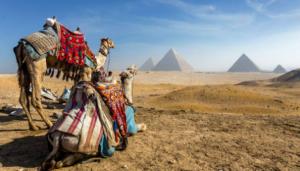 Как побывать на экскурсии в Египте?
